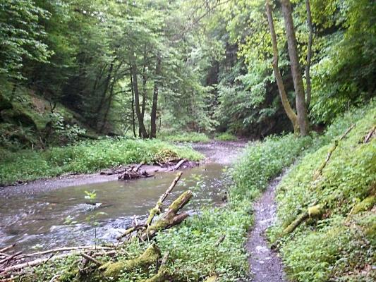 Fluß in unwegsamem Gelände - Foto: © 2013 by Schattenblick