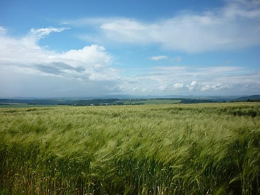 Panoramablick auf Felder und Wälder - Foto: © 2013 by Schattenblick