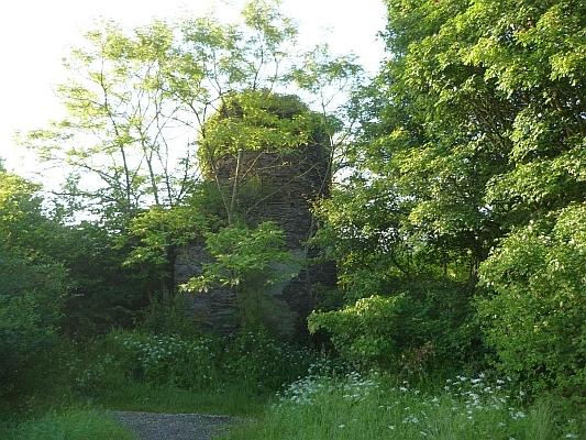 Überwucherter Turm der historischen Burg Waldeck - Foto: © 2013 by Schattenblick